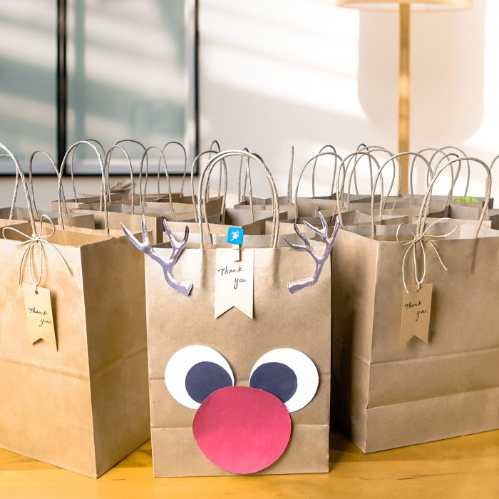 Kraft Paper Gift Bags for Shopping, Merchandise, Party - Brown